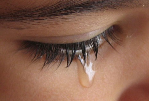 Quem respeita a dor alheia exerce a misericórida