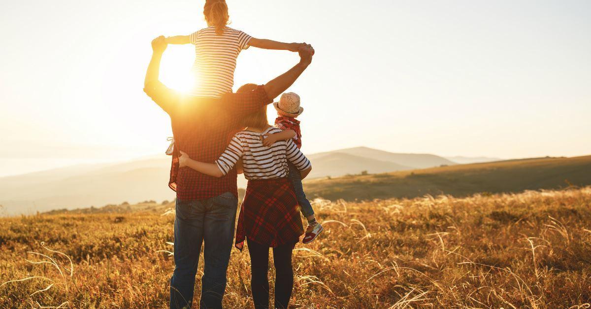 Revolução silenciosa contra a família e a infância