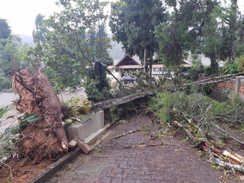 Ciclone bomba deixa igrejas destruídas em Santa Catarina