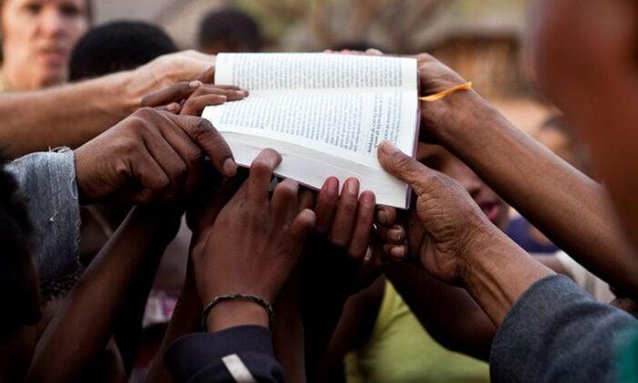 Bíblia estará acessível em todos os idiomas até 2033, projetam tradutores