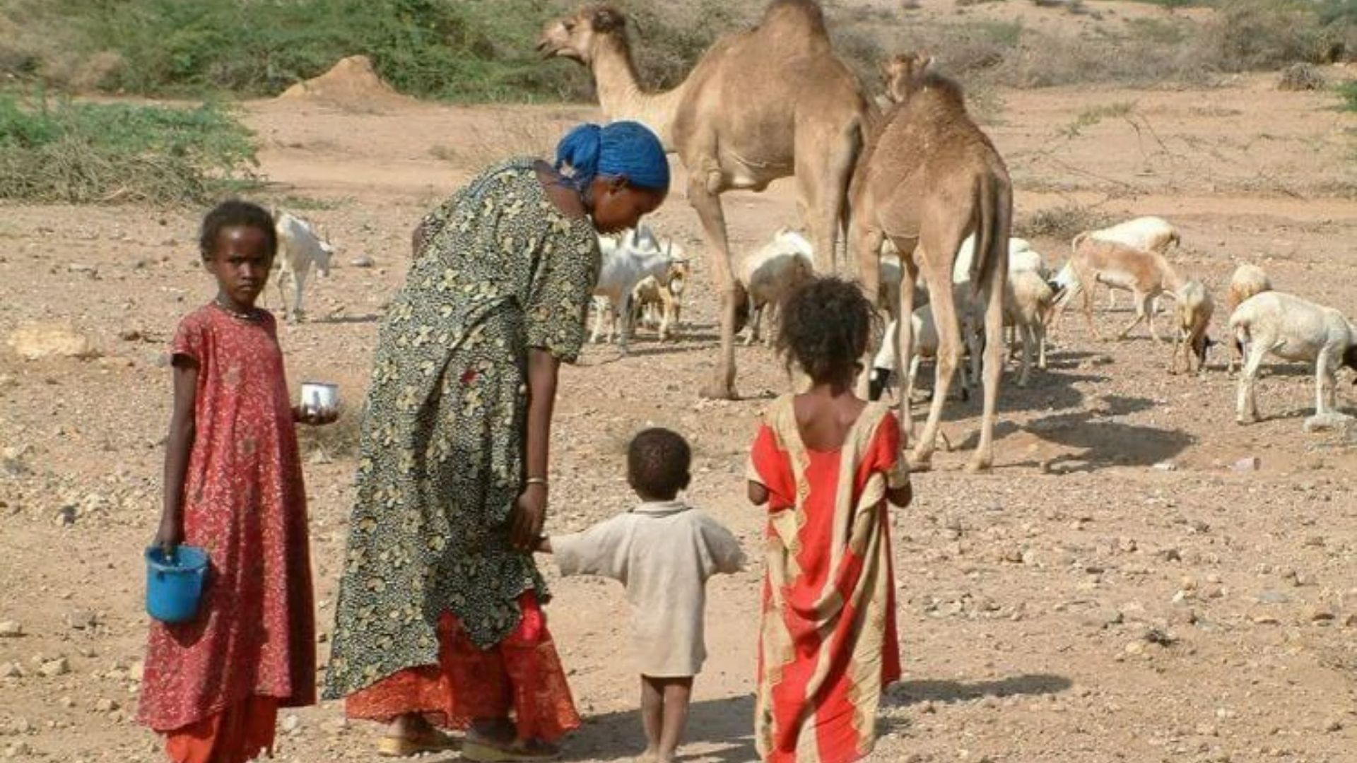 Países que perseguem a Igreja: cristãos são executados na Somália, assim que descobertos