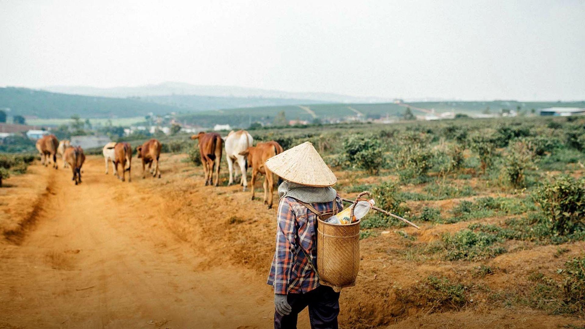 Família cristã é agredida e expulsa de vila no Vietnã
