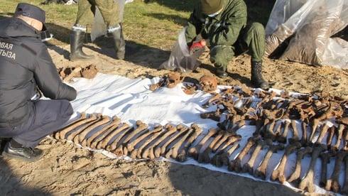 Restos de 1400 judeus mortos no Holocausto são encontrados em valas na Bielo-Rússia